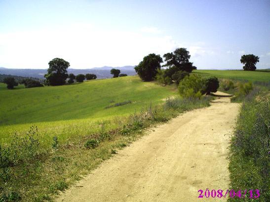 bargas1.jpg